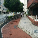Clearly designated cycle pathways.